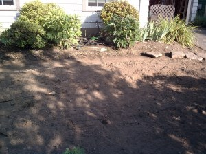 Yard Before (1)