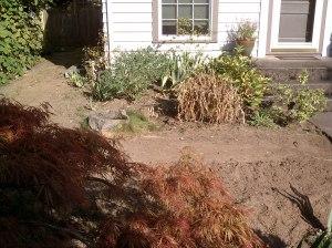 Yard Before (2)